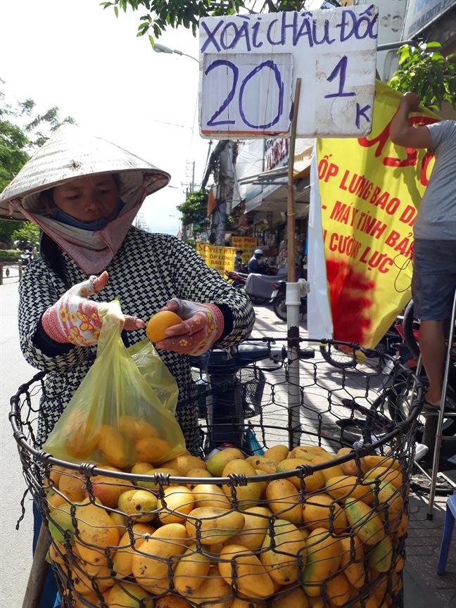 Xoài mini ngập chợ là xoài Trung Quốc 2