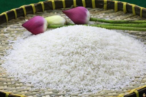 Gạo ST24 và gạo ST25 loại nào ngon hơn? 9