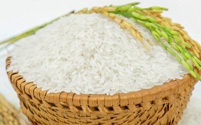 Gạo ST24 và gạo ST25 loại nào ngon hơn? 1