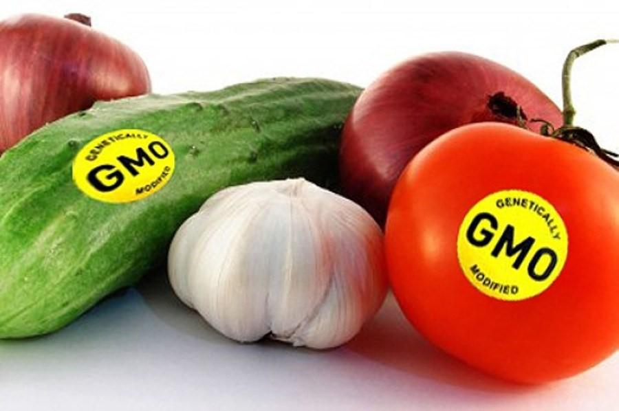 Thực phẩm biến đổi gen là gì? 3