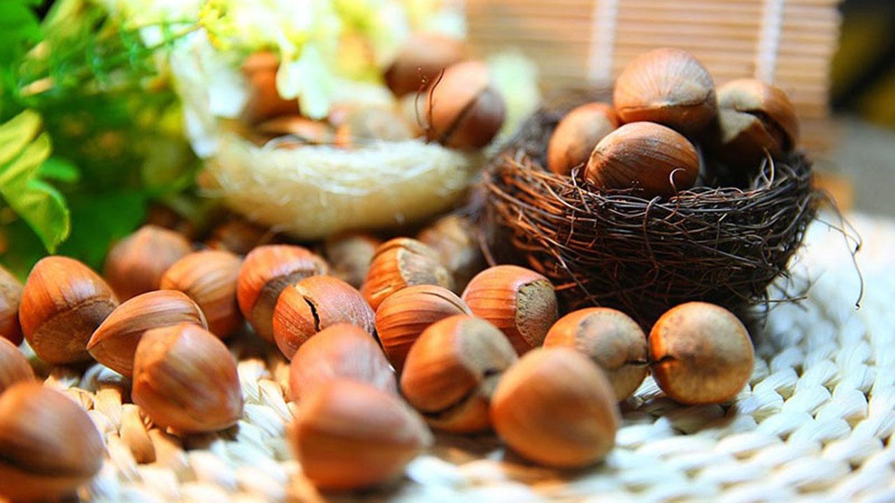 Hazelnut là hạt gì? Công dụng của hạt Hazelnut? 5
