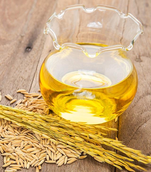 Dầu gạo là gì? Công dụng của dầu gạo? 2