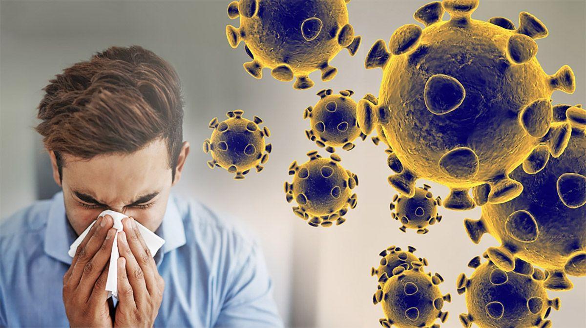 Sức đề kháng là gì? Những thực phẩm giúp tăng sức đề kháng mùa dịch 21